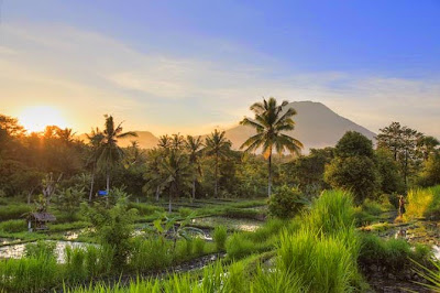 First-time Bali: where to eat, stay and play