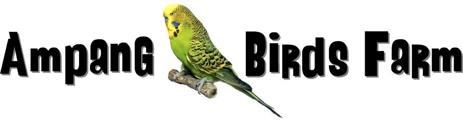 Ampang Birds Farm