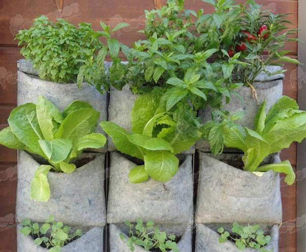 Huertos urbanos verticales jardines verticales y for Materas para jardines verticales