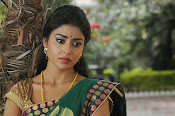 Shriya Saran latest Photos in saree-thumbnail-3