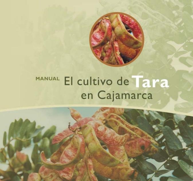 Cultivo de Taya