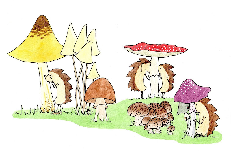 mushrooms_time 