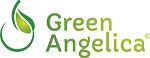 Penumbuh Rambut Alami Green Angelica