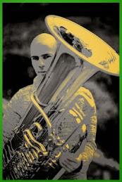 Rok Sinkovec - tuba player