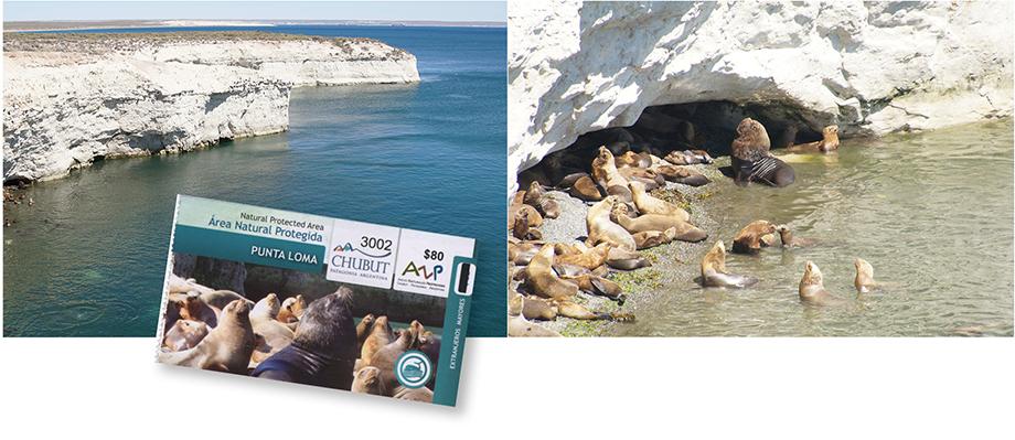 Ynas Reise Blog, Argentinien, Reisetagebuch, Punta Loma