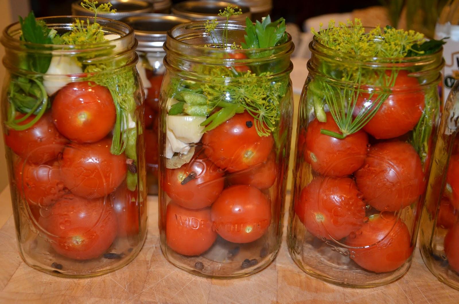 Пошаговое фото засолка зеленых помидор