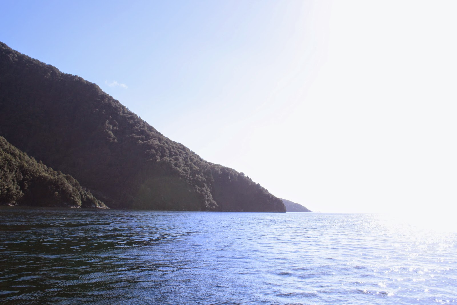 The edge of Milford Sound.