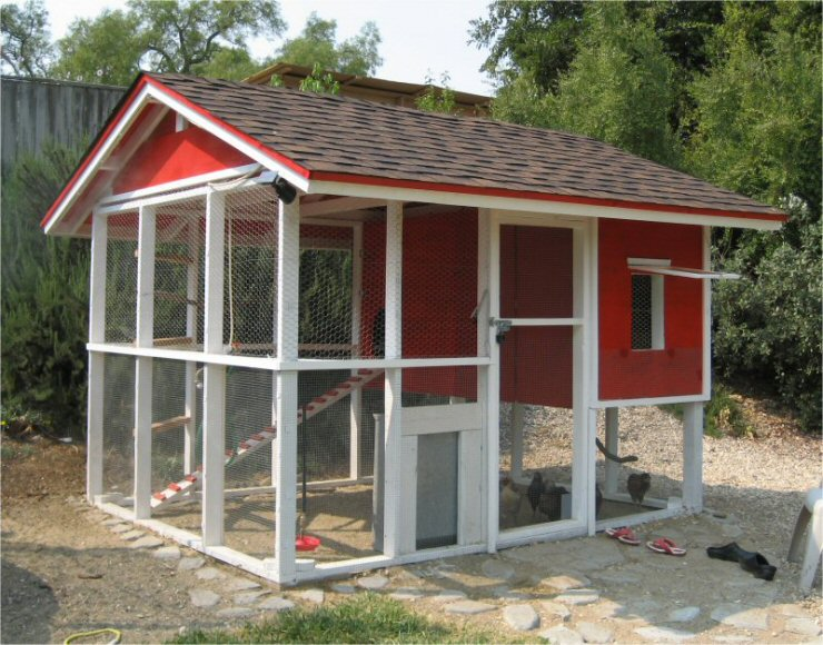 Building a chicken coop guide your blog description for Large chicken house
