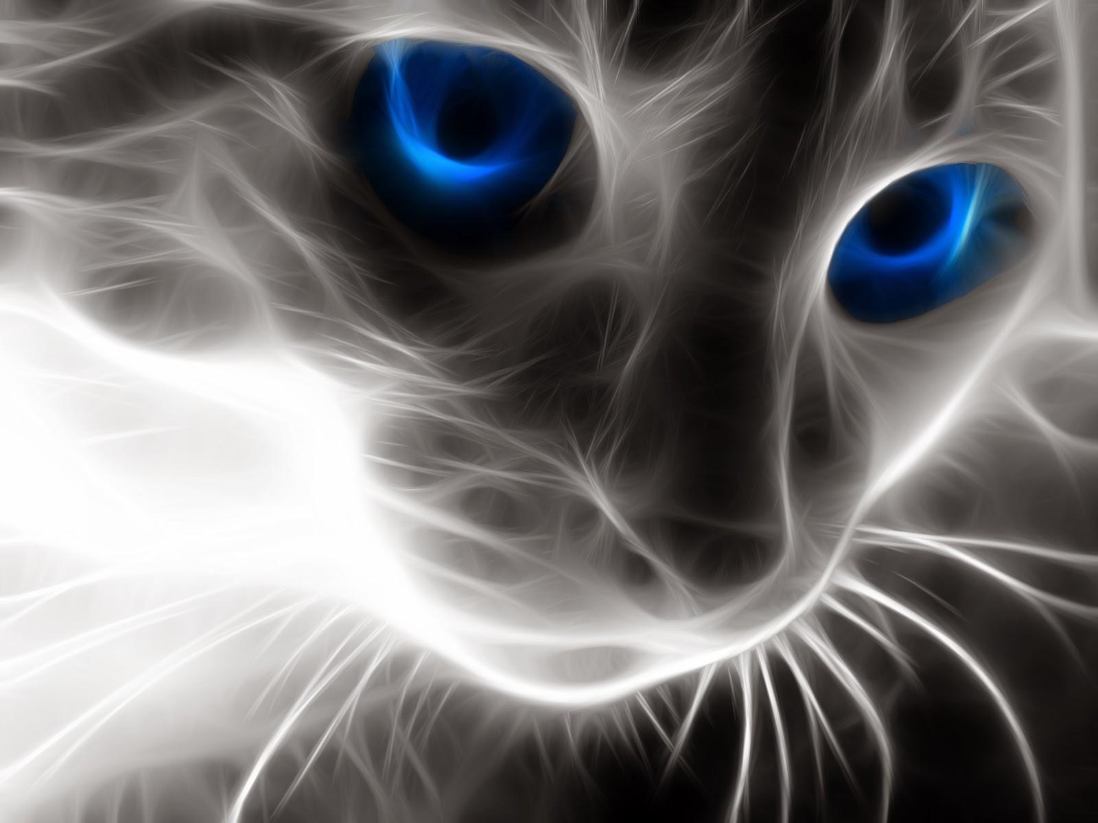 white kitten with green eyes