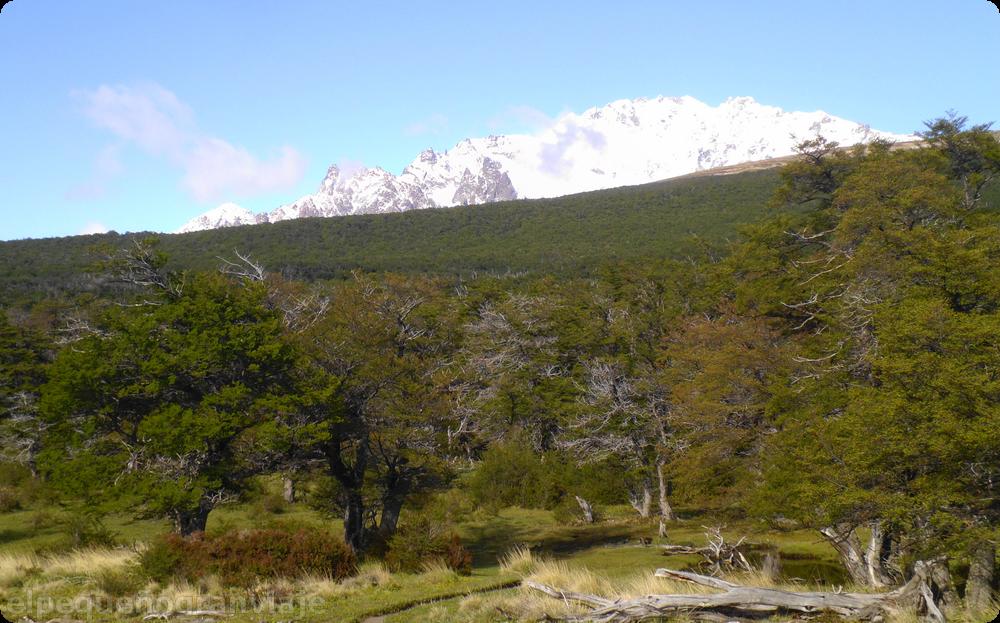 El Chaltén, patagonia , senda, sendero Pliegue Tumbado, cerro Huemul