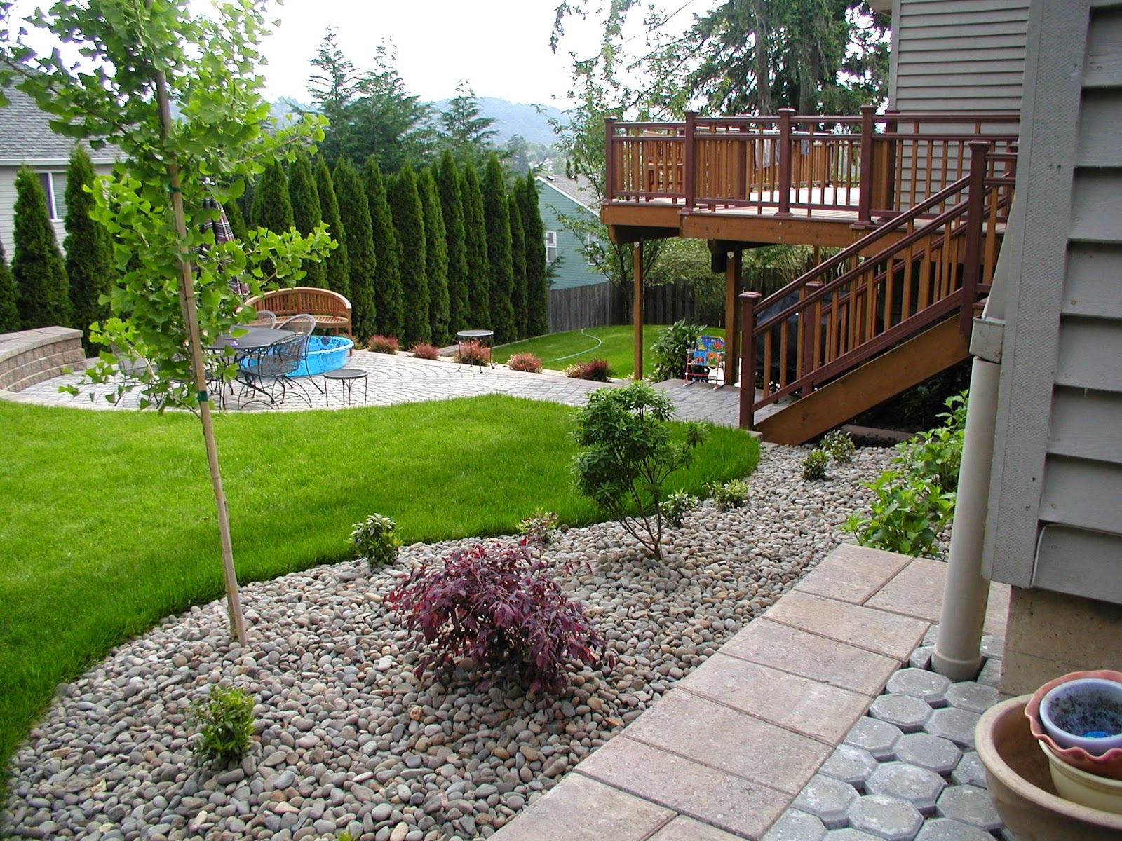 Backyard Landscaping Teaching Plant Simple Backyard Landscaping Ideas