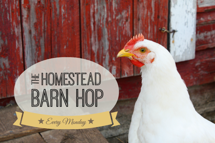 http://newlifeonahomestead.com/2014/09/mondays-homestead-barn-hop-178/