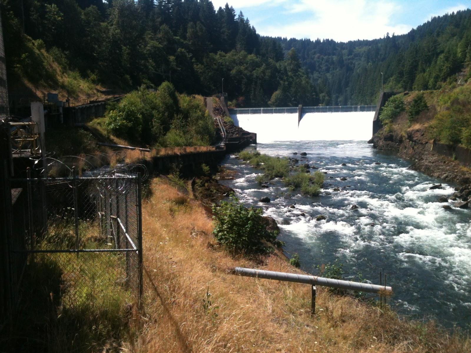 Clackamas river steelhead salmon to see big changes for Clackamas river fishing