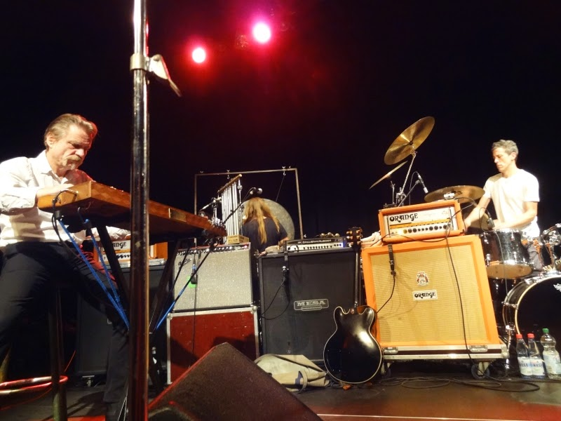 25.10.2014 Hannover - Pavillon: Swans