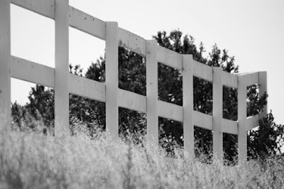 Black and white photo of a countryside fence with great texture