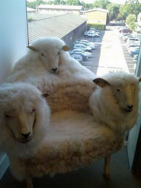 необычное кресло с барашками