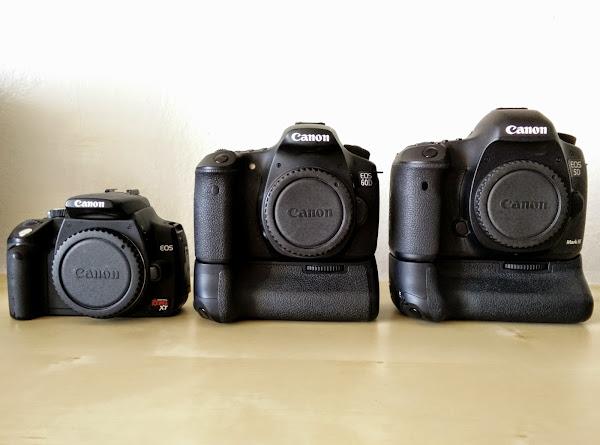 Cameras Bodies