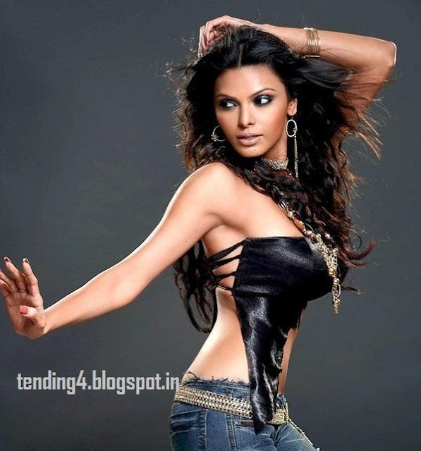 sherlyn chopra hot playboy pictures/pics/photos video twitter gallery latest news official movies