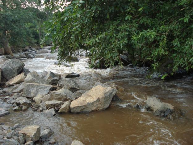 River Maredumilli