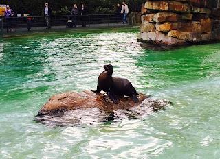 Berliner Zoo, Hardenbergplatz