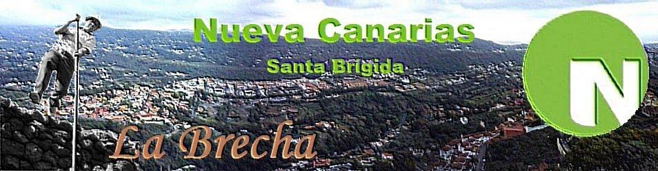 NUEVA CANARIAS SANTA BRÍGIDA
