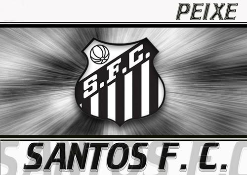 Santos Futebol Clube Notícias  7ec6d0947fcc5