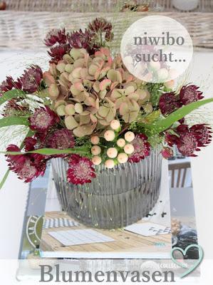 niwibo sucht: