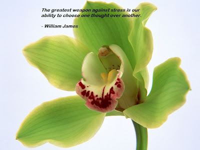 William James Quotes Wallpapers