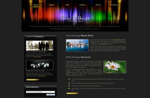 Free CSS Dark Black Colorful HTML Website Template