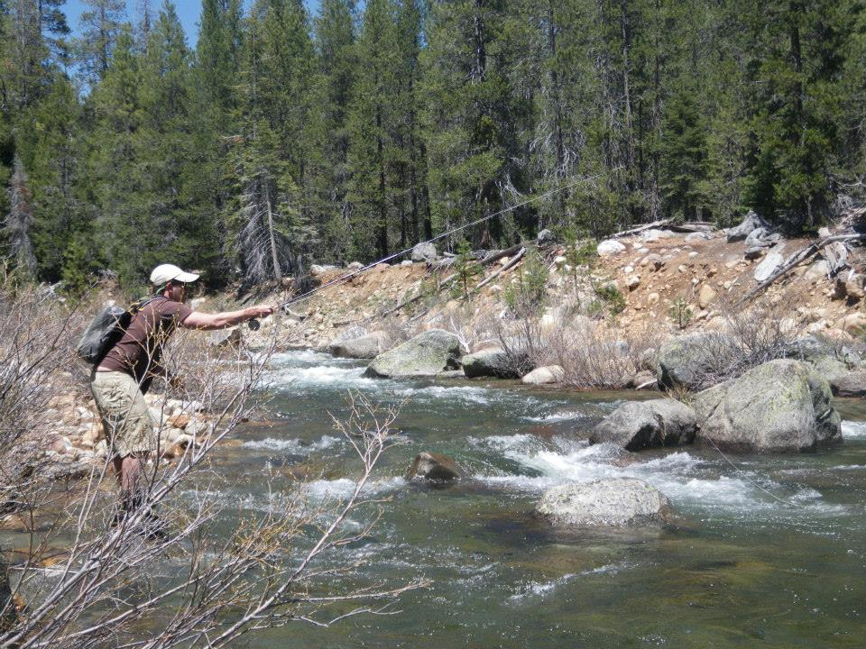 40 beats per minute dry fly fishing yosemite for Fishing in yosemite