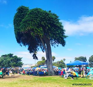 #TeamSchuCo Experiences La Jolla Concerts By The Sea