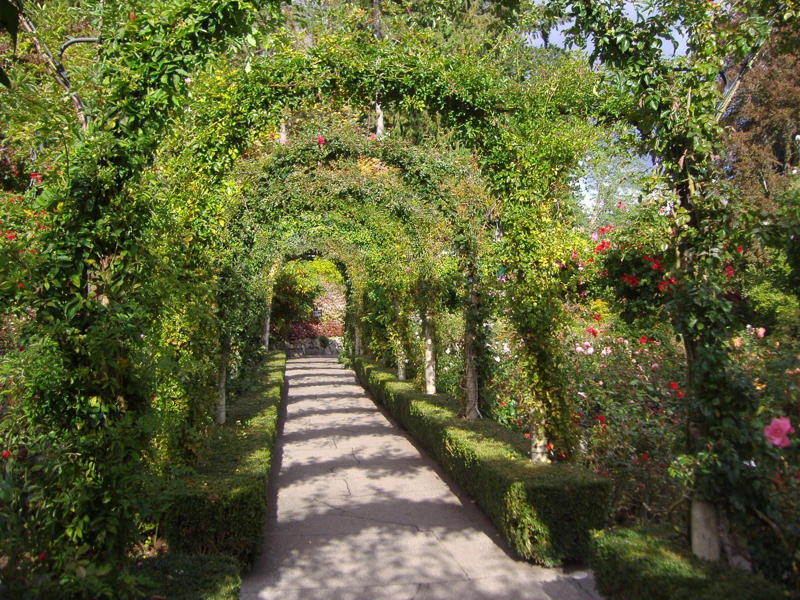 http://1.bp.blogspot.com/-QrqcHe4289U/TeGsGhRkgOI/AAAAAAAABcg/EJ0JnRns5h0/s1600/website+photos+002.jpg