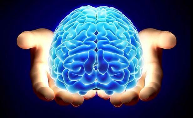 Cosas cotidianas que le hacen mal a tu cerebro