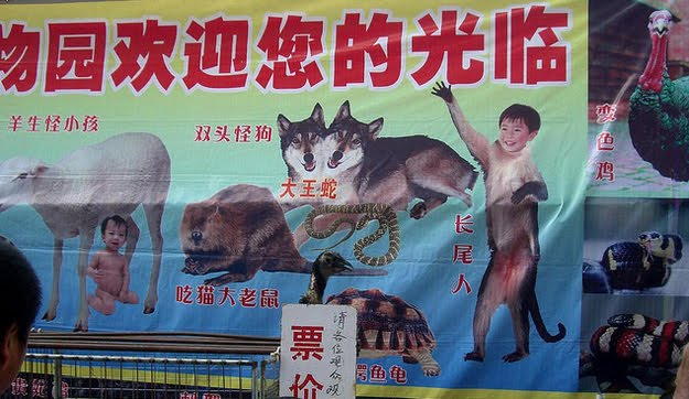 Funny Pictures from China