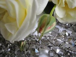 Adore Rose