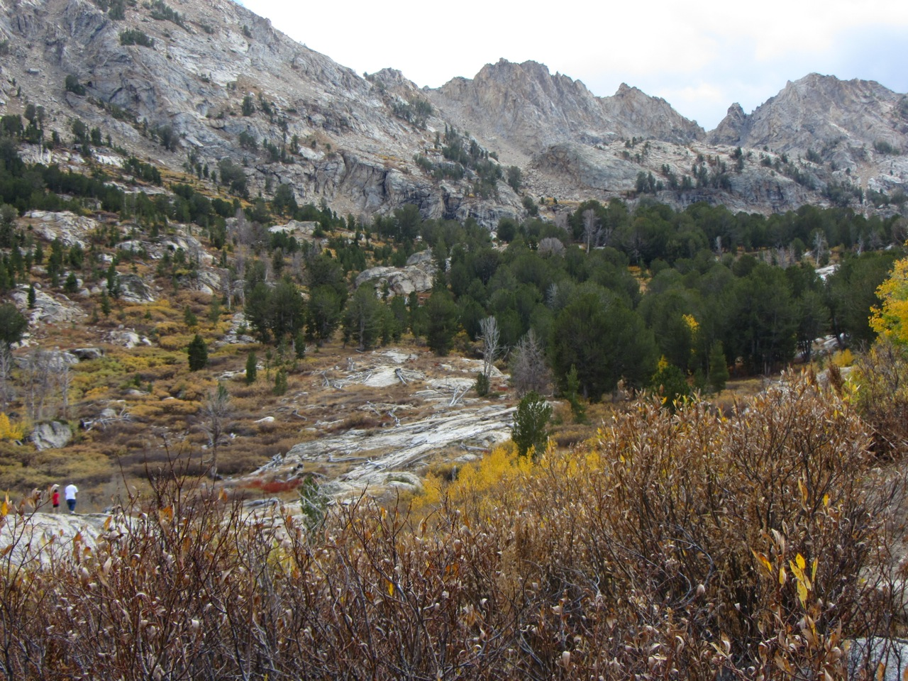 Autumn in Lemoille Canyon, NV  Photography by Diana