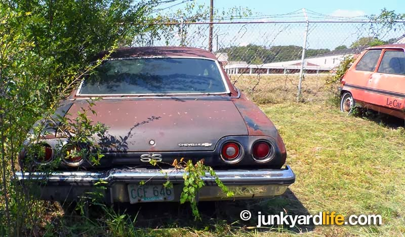 Cars in yards: A 1973 Chevy Chevelle SS found next to a 1981 Renault LeCar.