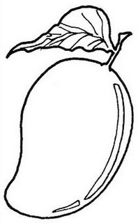 Line Drawing :: Clip Art :: Mango