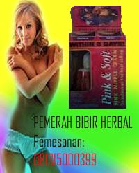 Kosmetik Herbal Kecantikan Perawatan Tubuh Obat Diet Obat Penghilang Bekas Luka Obat Herbal