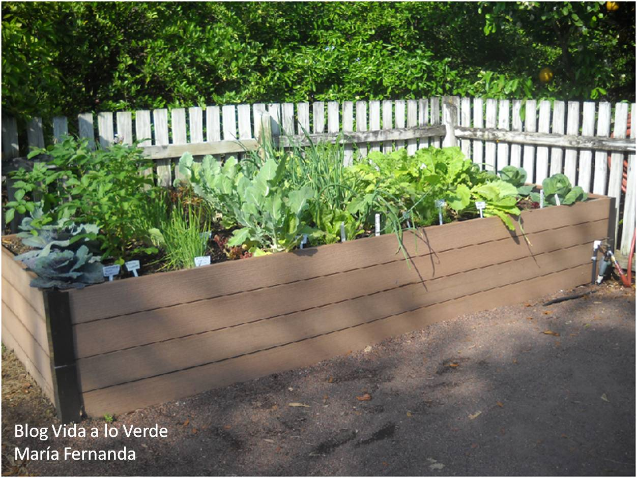 Vida a lo verde living in green c mo hacer un huerto - Como hacer un huerto urbano ...