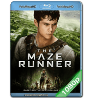 MAZE RUNNER: CORRER O MORIR (2014) FULL 1080P HD MKV ESPAÑOL LATINO