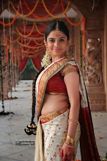 Sheena-Shahabadi-New-Stills-in-Saree