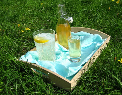 Homemade Elderflower Cordial