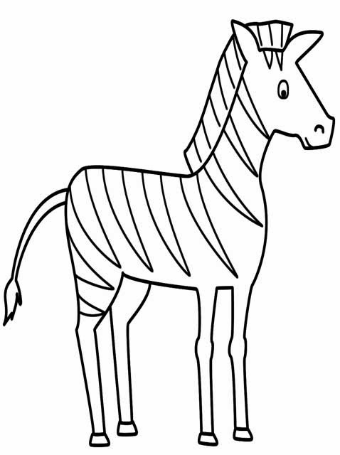 zebra coloring pages without stripes - photo #17