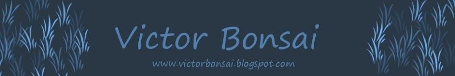 Victor Bonsai