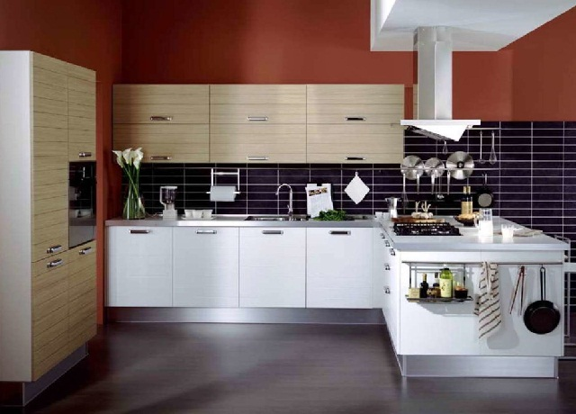 Modern kitchen cabinet colors for Contemporary kitchen cabinet colors