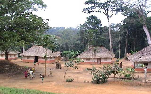 Salonga National Park Congo Heritage