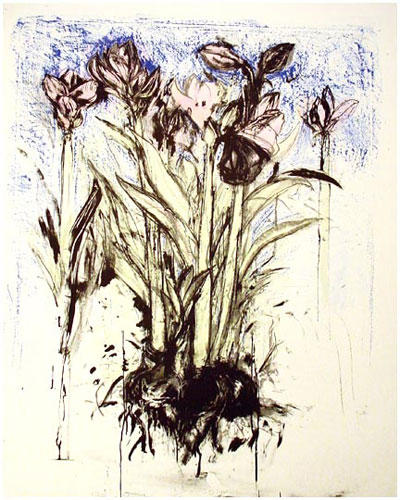 Jim Dine Flower Drawings Jim Dine Flower 39 s