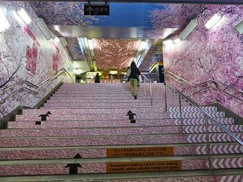 東京メトロ銀座線の上野駅に桜が彩った002