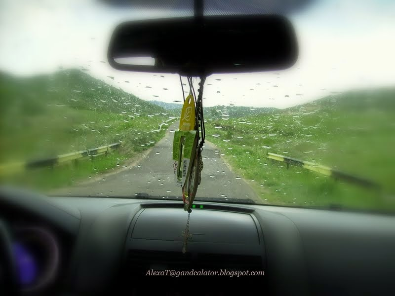Pe drum... stropi destul de mari! / On the road... quite large raindrops!